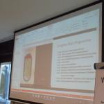 AM16 - Presentazione MA17